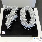 esprit-porcelaine-2015_P1200538